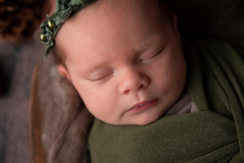 sleeping christmas newborn photo shoot grand rapids michigan