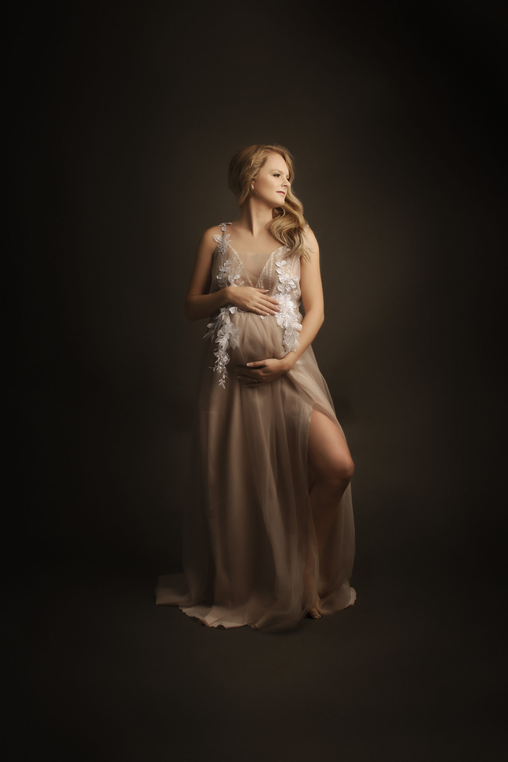 grand rapids michigan maternity fine art shoot mother with custom gown