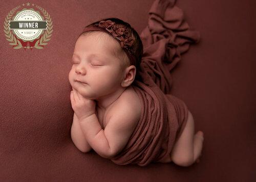 grand rapids award winning newborn photograph baby girl sleeping on pink